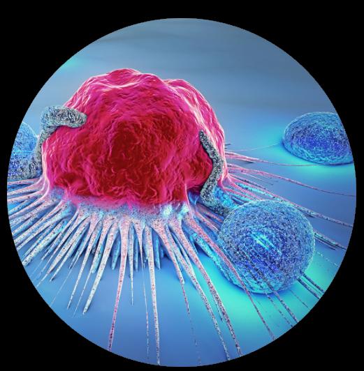 Webinar: Resolving Clonal Heterogeneity in Mouse Organoid Cancer Models